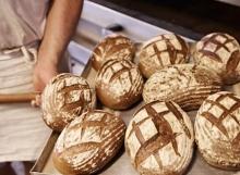 Um die Ecke-Zooviertel Bäckerei Cölven