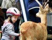 teilnehmer-zooviertel-wildpark